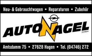 Auto Nagel